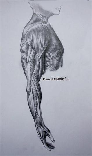 Karakalem Portre Sevgili Hediye İstanbul ankara sanat resim güzel sanatlar ANATOMİ 8