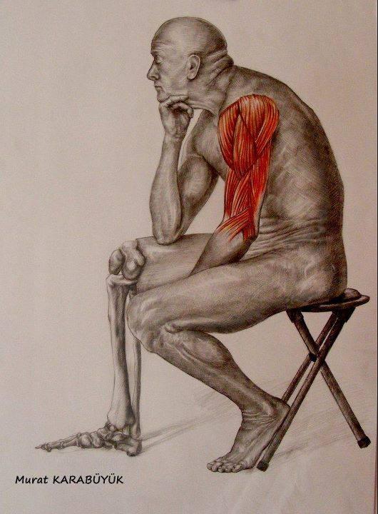 Anatomi ve Desen Çizimleri Kadıköy İstanbul